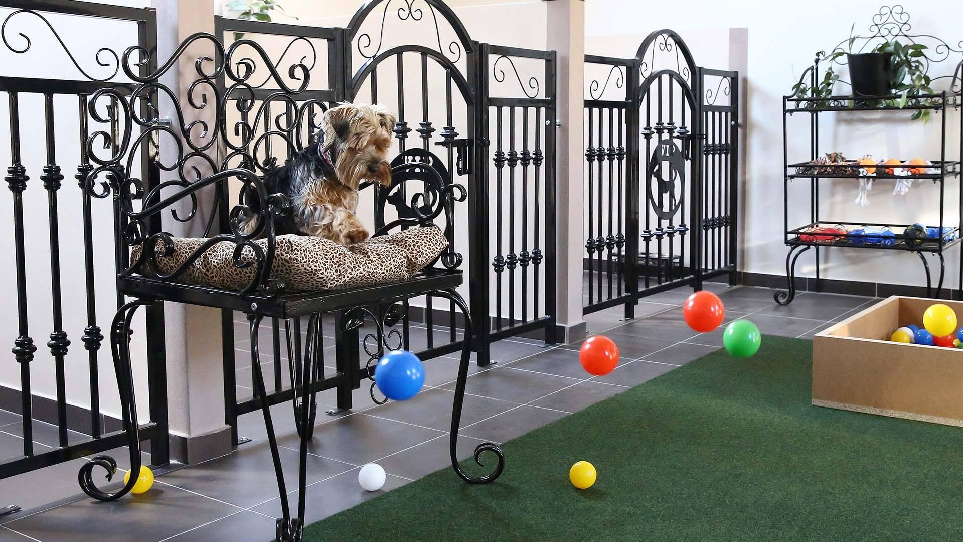 Hala hotelu pro psy VIP Pets